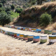 Multicoloured bee hives alignment in mountains — Stock Photo #12128734