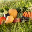Organic fruits and vegetables in autumn — Stock Photo