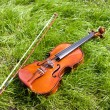 Royalty-Free Stock Photo: Violin.