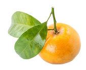 Mandarin. — Stock Photo