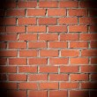 Brick Wall. — Stockfoto