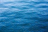 Fundo do mar. — Fotografia Stock