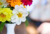 Vas med blommor. — Stockfoto