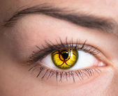 Human eye. — Stock Photo