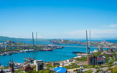 Vladivostok cityscape, daylight view. — Stock Photo