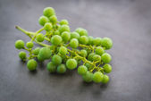 Unripe green grapes. — Stock Photo