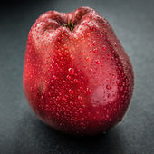 Dark-red apple. — Stock Photo