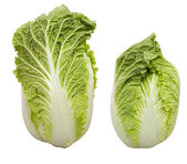Chinese cabbage in white background — Stock Photo