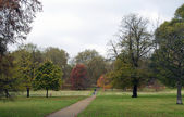 Park View in Autumn — Stock Photo