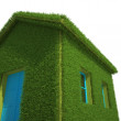 Ecological House — Foto de Stock