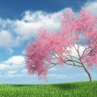 Judas tree on the grass — Stock Photo