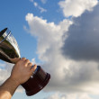 The Winner with Cup — Stock Photo #13730036
