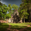 Sunshine on vegetation growing of the Angkor ruin — Stock Photo