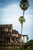 Nuns meditate on the ruin of Angkor Wat at sunrise — Stock Photo