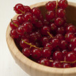 Plate with red currants - Photo