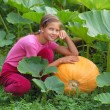Girl with pumpkin — Stock Photo #12831193