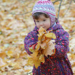 Foto Stock: Portrait of baby in autumn park