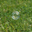 Soapy bubble — Stock Photo #13264982