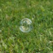 Soapy bubble — Stock Photo