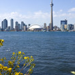 Stock Photo: Toronto Skyline and the CN Tower