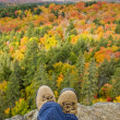Stock Photo: Fall Colors, Algonquin Park