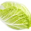 Napa Cabbage Isolated on White - Stock Photo