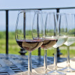 Stock Photo: Wine Tasting by Vineyard