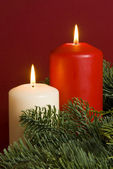 Red and White Christmas Candles Amongst Pine Tree Branches — Foto Stock