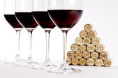 Vertical Red Wine Tasting — Stock Photo