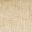 Burlap Texture — Stock Photo #12245291