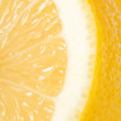 Cross-section of Lemon — Stock Photo #12245512