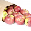 A Bag of Macintosh Apples Lying on Its Side Isolated on White — Stock Photo