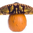 Stock Photo: Goose Bump Pumpkin Wearing Sombrero Isolated on White