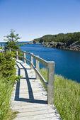 Boardwalk at La Manche Provincial Park Newfoundland — Stock Photo