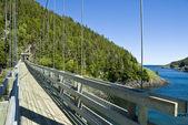 Puente colgante en el parque provincial de la manche — Foto de Stock