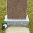 Granite Tombstone — Stockfoto #12340237