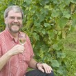 MHolding Glass of White Wine in Chardonnay vineyard — Stockfoto #12418681
