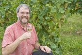 Man Holding a Glass of White Wine in a Chardonnay vineyard — Stock Photo