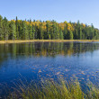 Stock Photo: Beaver Pond Trail Algonquin Park Canada