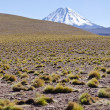 Stock Photo: Andes Mountains and Volcanoes