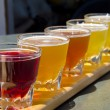 Beer Sampler — Stockfoto