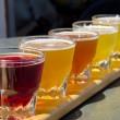 campionatore di birra — Foto Stock