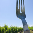 Vineyard and fork — Photo