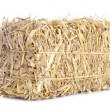 A bale of hay isolated on a white background. — Stock Photo