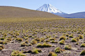 Andes Mountains and Volcanoes — Stock Photo