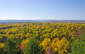 Fall Colors Seen from a Cliff — Stock Photo