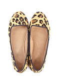 Women's Animal Print Flat Shoes — Stock Photo