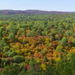 Stock Photo: Panoramof Fall Colors from Lookout Trail in Algonquin Park