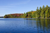 Fall Colors at Canoe Lake in Algonquin Park — Stock Photo