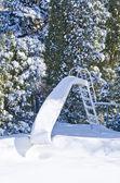 Toboggan aquatique couvert de neige — Photo